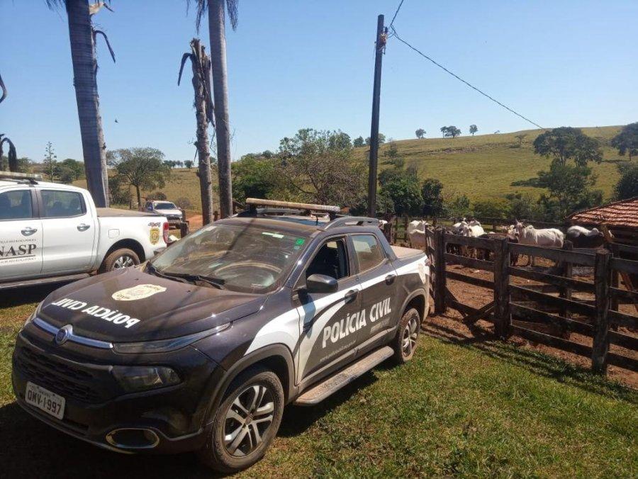 PC recupera cabeças de gado em Patos de Minas