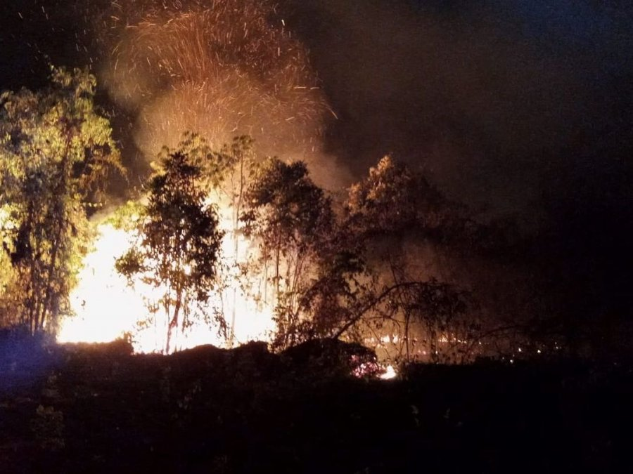 Bombeiros combatem incêndio na mata do Catingueiro, 3º em menos de uma semana