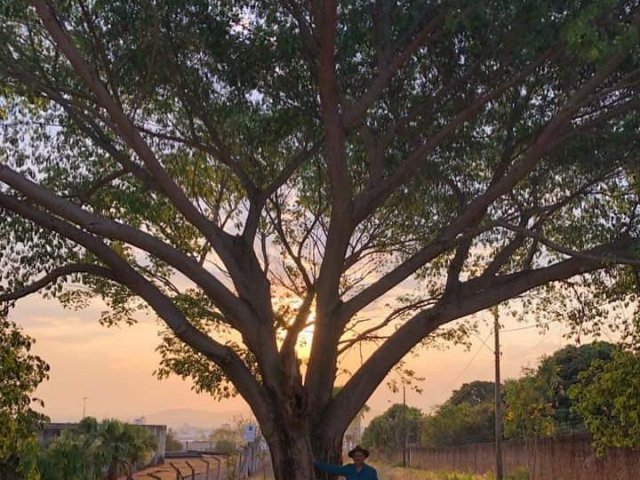 O homem que está arborizando Patos de Minas planta a árvore de número 3500 dentro do Quartel da Polícia Militar