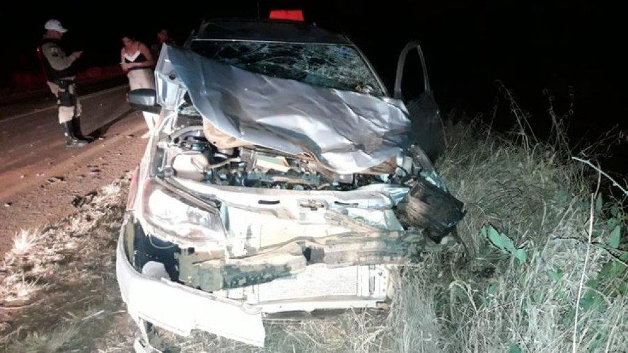 Vacas invadem pista, causam acidente entre dois veículos na MG-230 e precisam ser sacrificadas em Rio Paranaíba